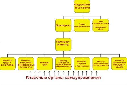 Структура федерации молодежи